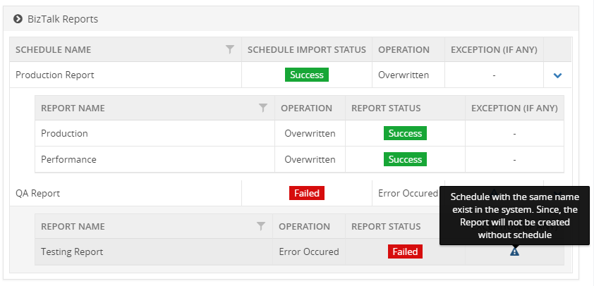 BizTalk360-Import-BizTalk-Reports-Result-Summary.png
