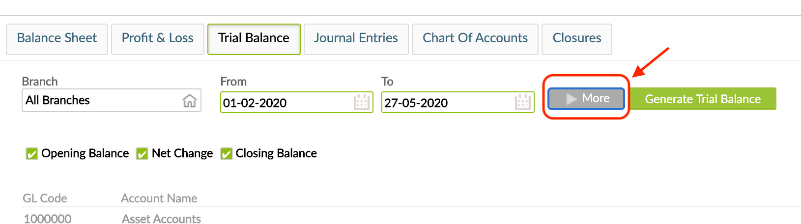 Show more options for Balance Sheet